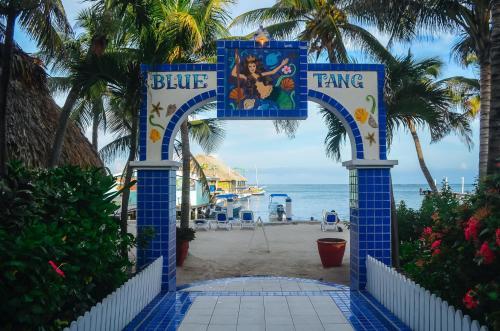 Blue Tang Inn photo 1