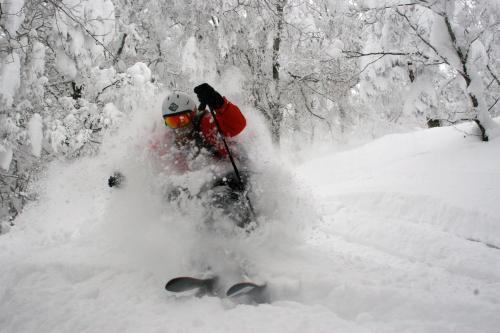 Kamoshika Ski Lodge - Accommodation - Nozawa Onsen