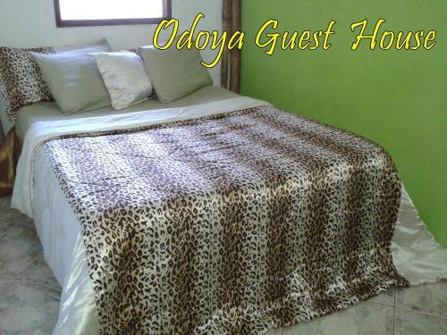 Hotel Odoya Guest House