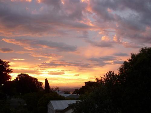 Cobden Garden - Accommodation - Napier