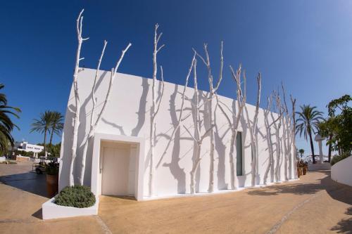 Cap Martinet s/n, 07819 Talamanca, Spain.