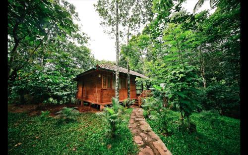. Bamboo Creek Resort