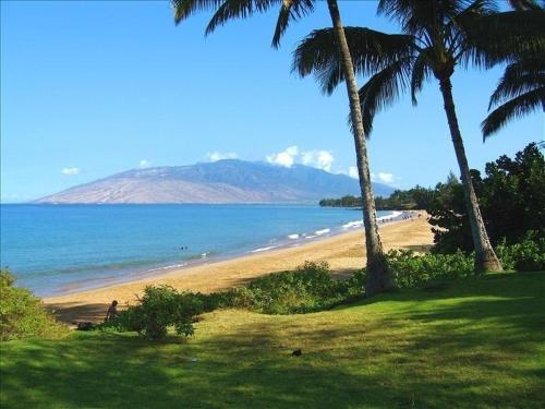Kamaole Beach Royal #305 - Kihei, HI 96753