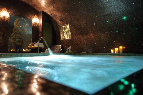 Hôtel Da Vinci & Spa photo 46