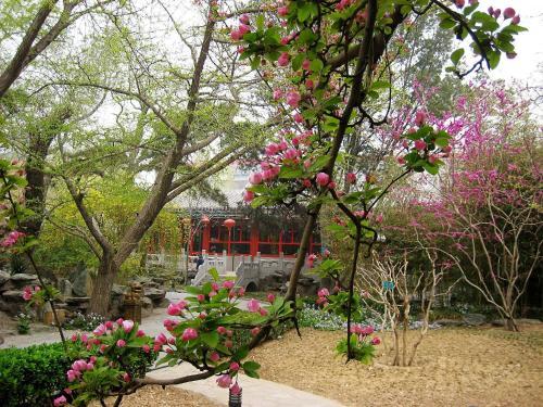 Bamboo Garden Hotel photo 5