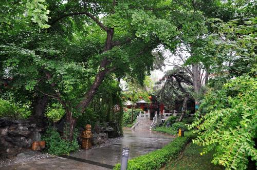 Bamboo Garden Hotel photo 6