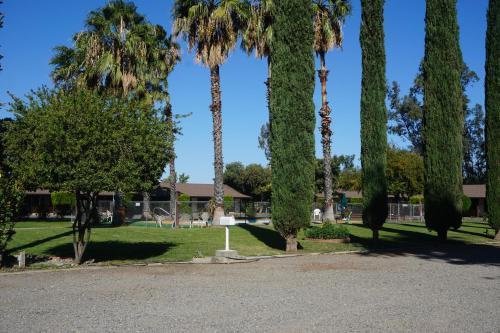 Blue Gum Motel - Willows, CA 95988
