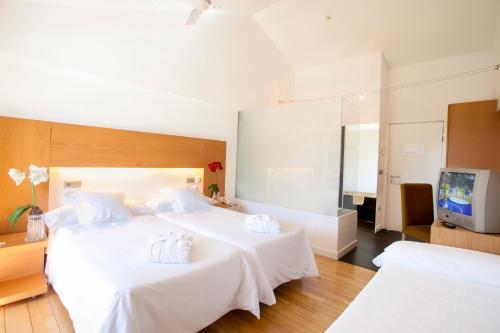 Habitación Doble con cama supletoria (2 adultos + 1 niño) Tierra de Biescas 22