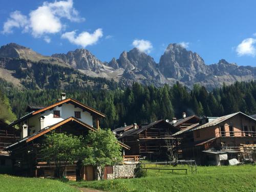 Chalet nel cuore delle Dolomiti - Apartment - Falcade