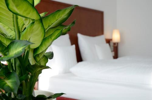 Hotel Weichandhof by Lehmann Hotels photo 18