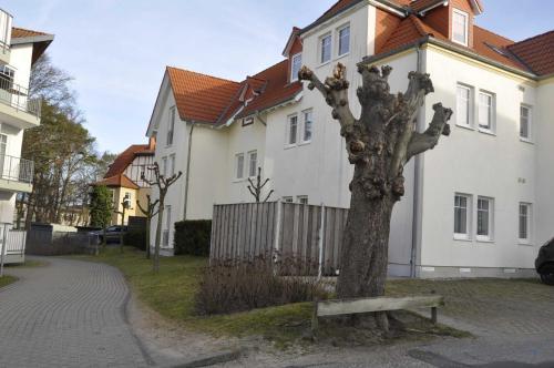 EG 05 Ferienwohnung am Wilhelmsberg photo 16