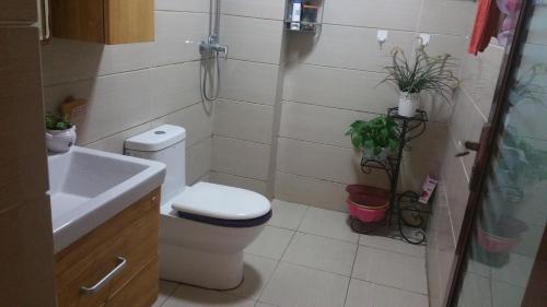 Guesthouse (Shuang Liu airport) room photos