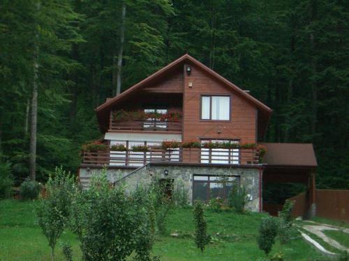 Villa Mara - Accommodation - Sinaia