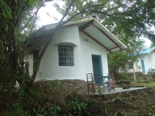 Jungle Lodge Eco Resort (B&B)