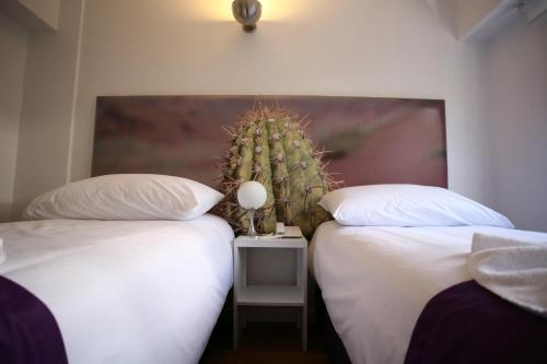 Infinito Hotel photo 2