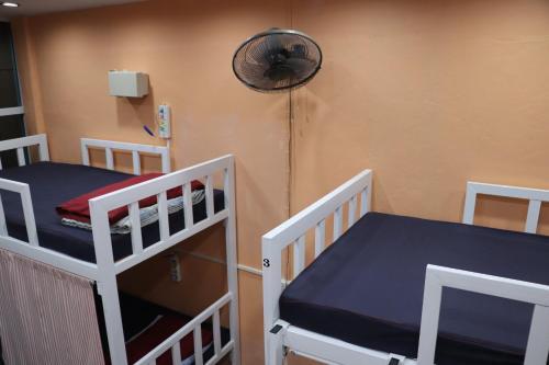 AMA Hostel photo 16