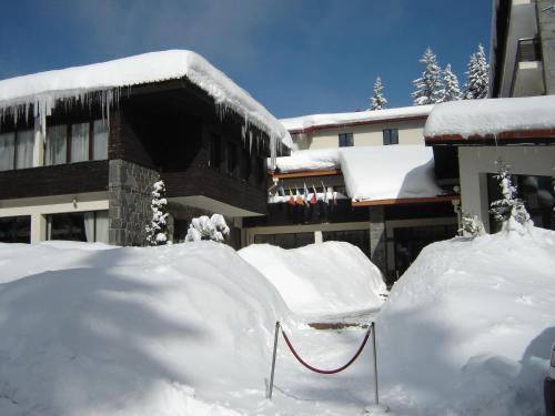 Finlandia Hotel - Pamporovo