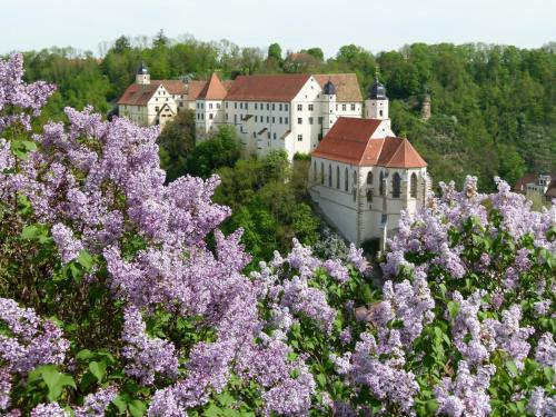 Kasteel-overnachting met je hond in Schloss Haigerloch - Haigerloch