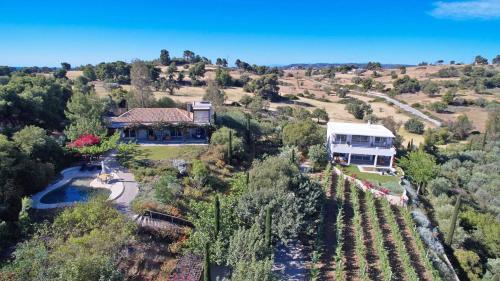. Vineyard Estate