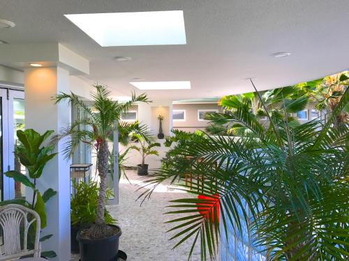 Unique Atrium Lanai Loft - Honolulu, HI 96817