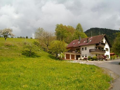 Ferienwohnung Am Sulzbächle - Apartment - Bad Rippoldsau-Schapbach