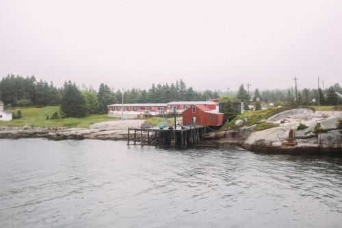 Sand Dollar - Halifax, NS B3Z 3R1