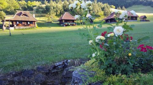 Accommodation in Zlatibor