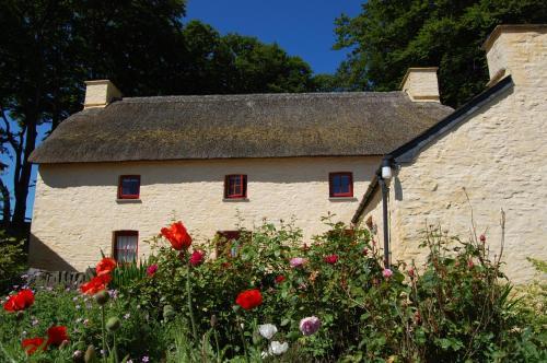 . Treberfedd Farm Cottages and Cabins