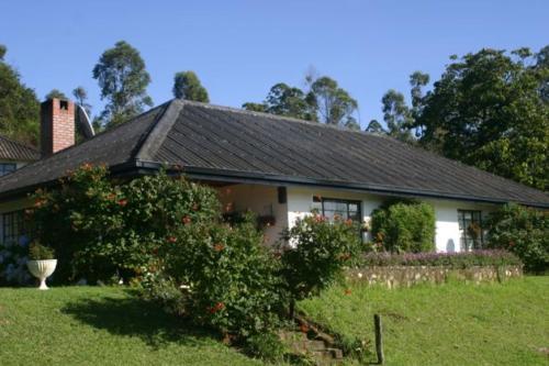 . Samango paradise in the Vumba