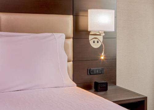Hilton Garden Inn NYC Financial Center/Manhattan Downtown Двухместный номер с 2 двуспальными кроватями и видом на водоем