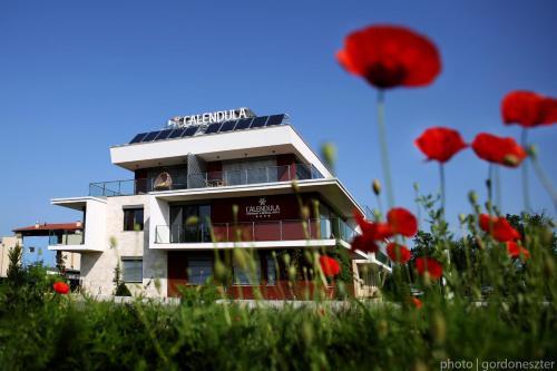 Calendula Ayurvedic And Medical Hotel