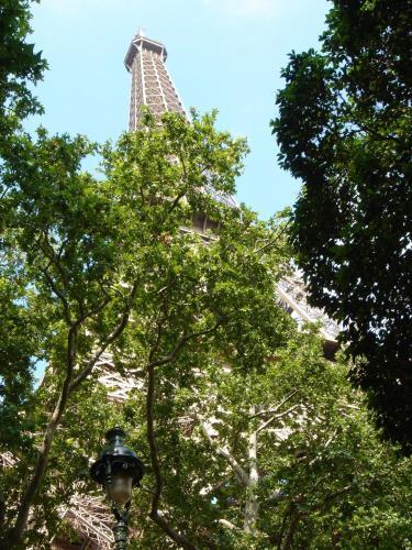 Hôtel de l'Exposition - Tour Eiffel photo 20