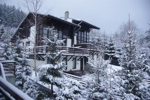 Casa Ferica - Accommodation - Azuga