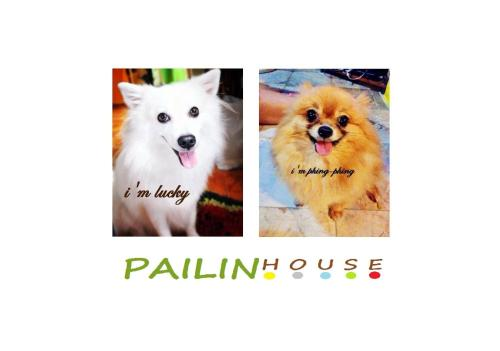 Pailin Guest House photo 17