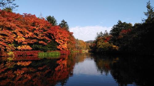 Forestsoul Nishikaruizawa