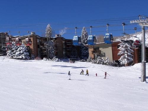 Shadowbrook 204 - Snowmass Village, CO 81611