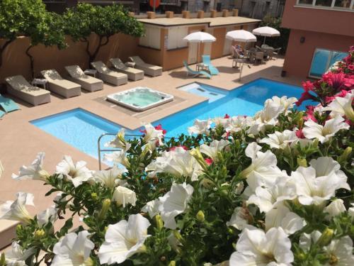 . Hotel Monte Rosa