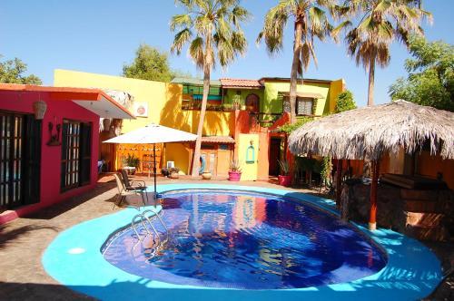. Leo's Baja Oasis