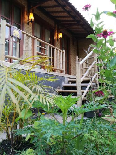 Larosa Homestay, Banyuwangi