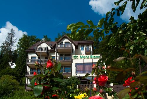 Accommodation in Predeal