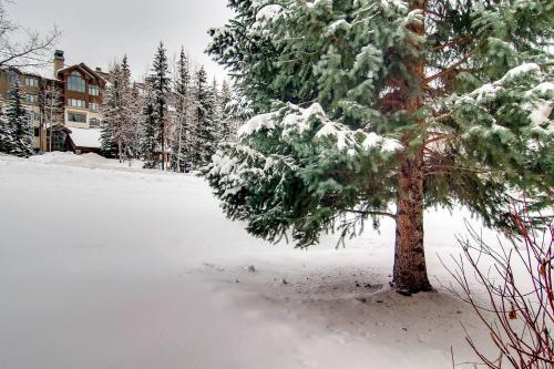 Kiva 235 - Beaver Creek, CO 81620