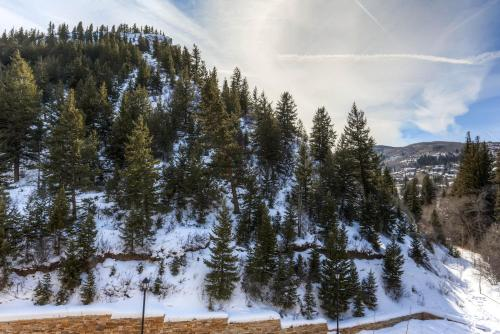 Ascent 405 - Avon, CO 81620