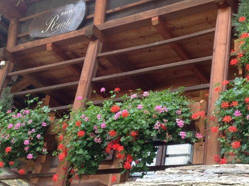 Baita Reale - Accommodation - Alagna Valsesia