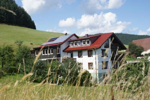 Pension Haus-Sommerberg - Baiersbronn