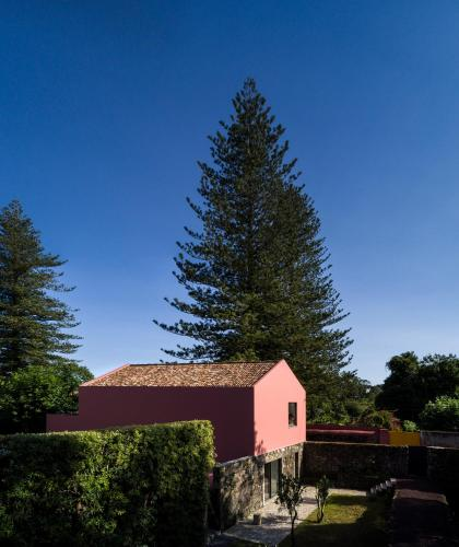 Pink House Azores - Photo 7 of 65