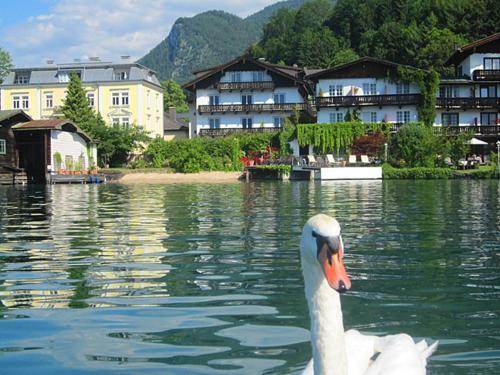 . Hotel Seerose Garni Wolfgangsee