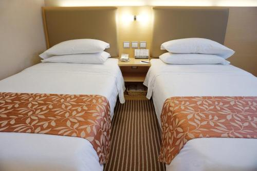 The South China Hotel photo 30