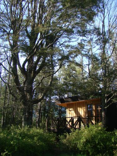 . Lodge Punahue