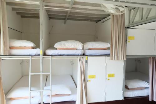 Double Bed in 8-Bed Mixed Dormitory Room