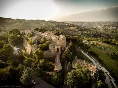 Kasteel-overnachting met je hond in Castello di Montegridolfo Spa Resort - Montegridolfo